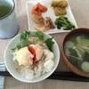 3/26 東京 晴れ 暖かい