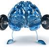スポーツで優秀な成績を収めるには大脳皮質の興奮水準を高める必要がある(大脳皮質をそれほど使わない人が大きな力を発揮することは生理学上は考えられない)
