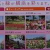 ガーデンネックレス2021 横浜公園