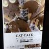 猫カフェ MoCHA(モカ)池袋西口店は一人でもカップルでもオススメ!