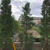 庭木がなかなか大きくならないので、グリーンパイルという肥料をあげてみた