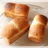 自家製酵母でミニはちみつ食パン。