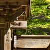 高野山へ避暑 2020 Ⅺ