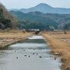 日光池(鳥取県鳥取)