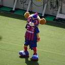 【蹴球亭】サッカー感戦家 日本代表サポーター&FC東京SOCIO