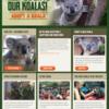 【オーストラリア山火事2020】オーストラリアを救う手助けを!! 山火事で被害にあっている動物に募金をする方法!!