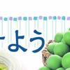 デザイン 図形使い 旬を漬けよう イズミヤ 5月29日号