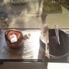 萬惣お茶教室