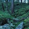 庭好きなら知っておくべき日本の偉人・夢窓疎石を読み解く!