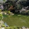 細川庭園の中池・大池(東京都文京)