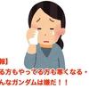 【悲報】 見る方もやってる方も寒くなる・・・ こんなガンダムは嫌だ!!