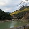 二津野ダム湖が‼