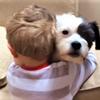『赤ちゃんと犬の可愛らしいハグ♪』。。。