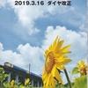 ポケット時刻表 千葉支社(2019年版)