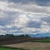 秋色パレット   収穫のあと