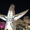 平日の万博記念公園は夜桜の穴場スポットかも