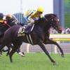 オークス馬スマイルトゥモローが小腸破裂で18歳で死す