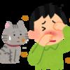 猫に触れたい!猫アレルギーの対処法6つと市販の専用薬