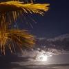 水無月の満月・後記