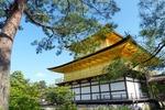 紅葉も桜も満喫できる!観光シーズンの京都を、混雑を避けて楽しむ5つのコツとは?