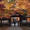 松戸 東漸寺の紅葉