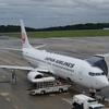 JAL国内線特典航空券 夏のマイルバックキャンペーンは8月31日まで対象