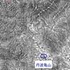 天正9年4月18日瀬野右近・東沢加賀守宛明智光秀判物写を読む