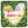 【お知らせ】はんどめいどマルシェ☆感謝セール、開催決定!