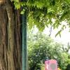 【書き物語】全力全開!竹とんぼオジサン~フィクション→ノンフィクション~