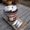 焼き芋、そしてプチBBQ