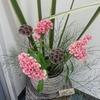 もうすぐ11月 秋の彩りは大人ピンクの生け花