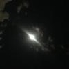 新しい流れのスイッチが入っていく双子座満月