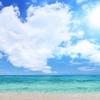 【最新版】夏に向けて模様替え!!ハワイアン雑貨の魅力!!厳選20選