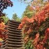 紅葉と国宝の奈良
