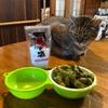 徳之島の徳の塩で作州黒の枝豆を食べる