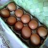 シフォンケーキ研究と、カンボジアの卵のお話。