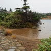 ガマ沼(岩手県八幡平)