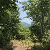 金糞岳……を視察(道を間違え撤退)