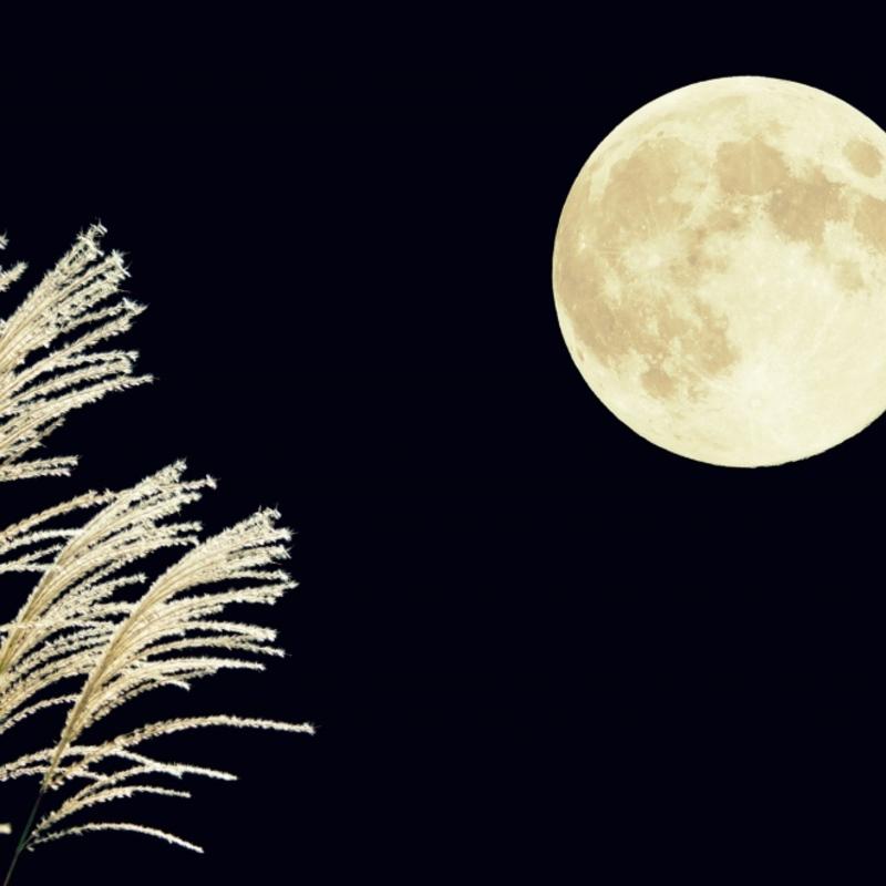 情緒あふれる秋の観月と音楽を楽しむ夜〜京都のお月見イベント〜