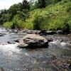 渓流釣りに行きました。