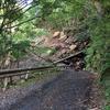 中津川林道の崩落