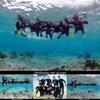 サンゴの海を満喫!