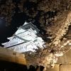 大阪城公園・桜満開