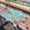 たにログ079 【新潟】新潟市近郊の多肉狩りスポット5選①