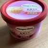 アイスクリーム用スプーン