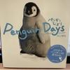 ぺんぎんびより〜Penguin Days〜