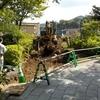 参集殿の建築工事が今日から始まりました