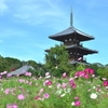 法隆寺をトゥクトゥクで巡るツアーが登場
