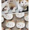 猫の豆皿part2