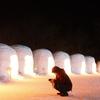 奥日光湯元温泉の雪祭りライトアップを撮ってきました ~氷彫刻編~